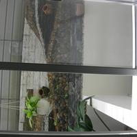 Cửa lưới chống muỗi tự cuốn màu ghi HM006