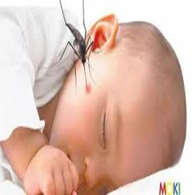Để muỗi không còn làm phiền giấc ngủ của bé với cửa lưới chống muỗi