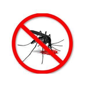 Vì sao nên lắp đặt cửa lưới chống muỗi trong phòng trẻ nhỏ?
